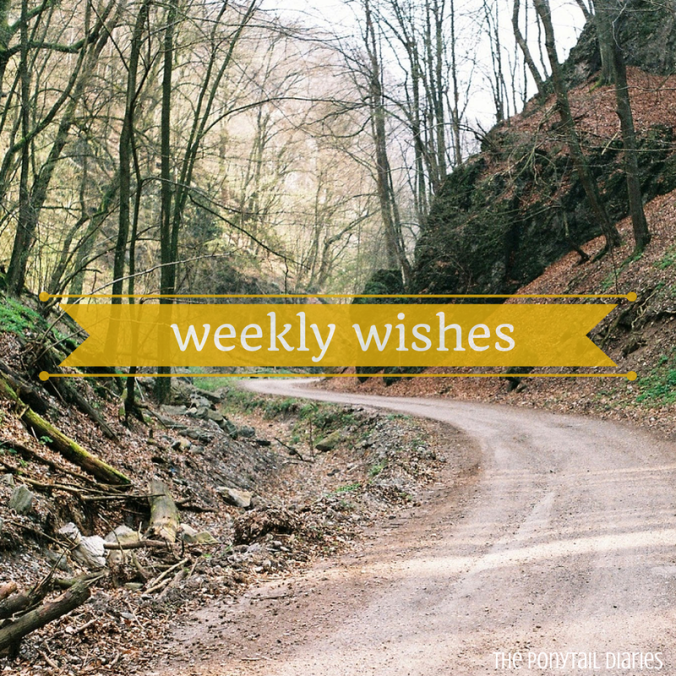 Weekly Wishes {the ponytail diaries}