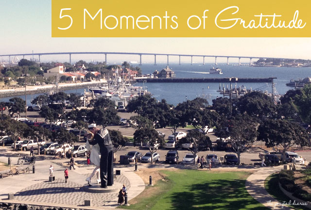 5 Moments of Gratitude {the ponytail diaries}