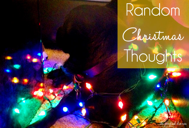 Random Christmas Thoughts {the ponytail diaries}