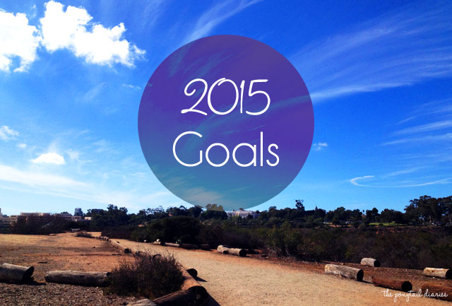 Weekly Wishes: 2015 Goals {the ponytail diaries}